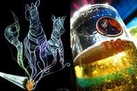 Charla en inglés: Alcohol y Drogas