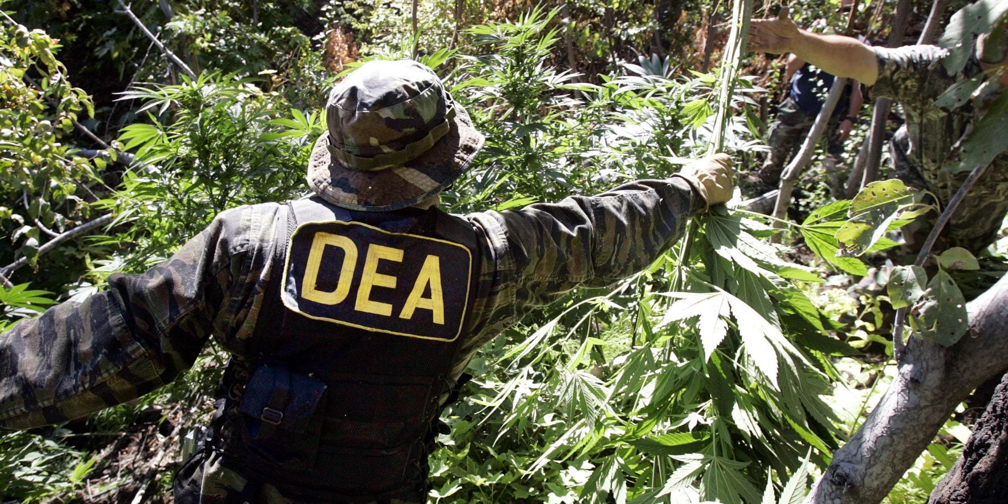Conversación en inglés 2.2: La guerra contra las drogas