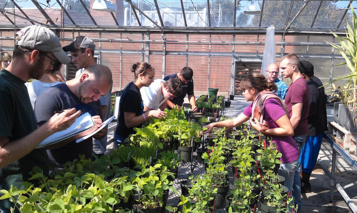 La horticultura: Vocabulario en inglés 2.5